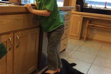 Sarah Palin Dog, Sarah Palin Son Stands On Dog, Social Media Outrage